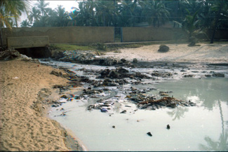 Effluents being let out into sea by TTP in           Trivandrum
